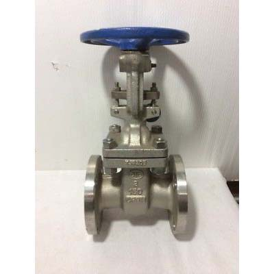 Cast 316 Stainless Steel Rising Stem OSY Gate Valve, 6 in, Flanged, 275 psi