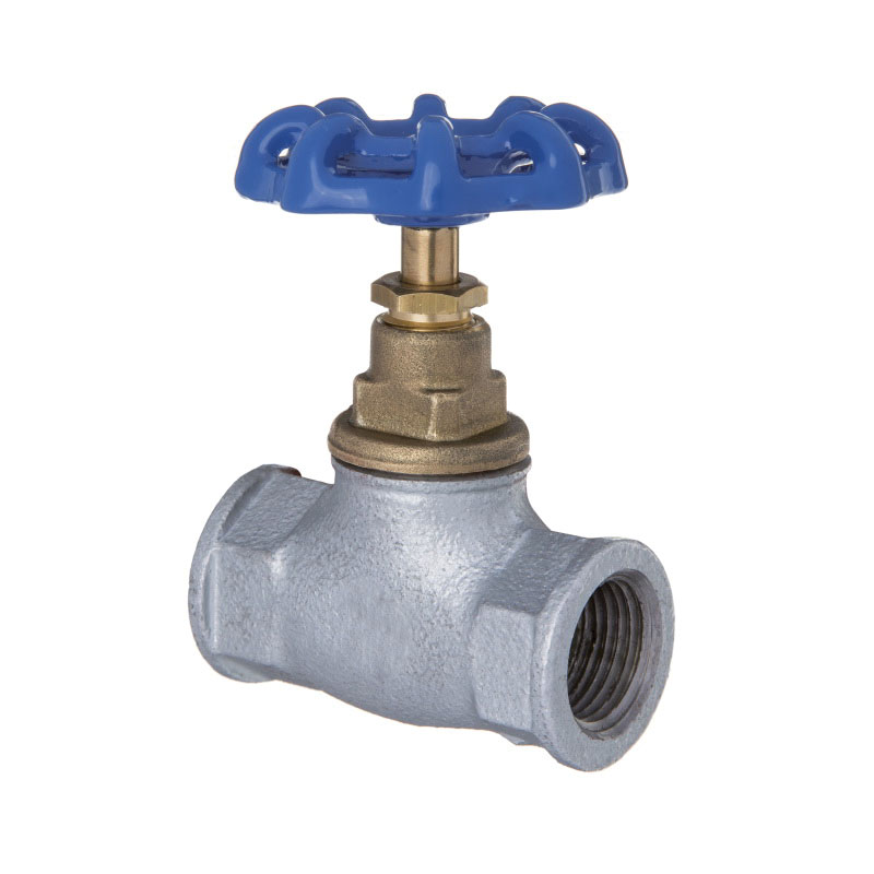 Cast Iron Valve, 3/4 in