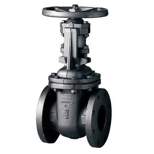 CRANE® 465-1/2 Cast Iron Rising Stem OSY Gate Valve, Flanged, 200 psi, -20 to 100 deg F