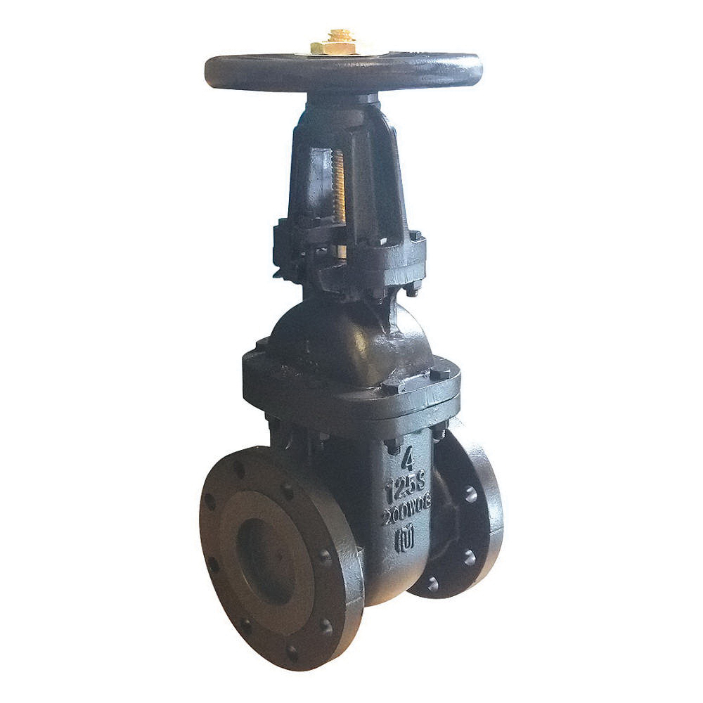 Milwaukee Valve F-2885A Cast Iron OSY Gate Valve, Flanged, 200 psi
