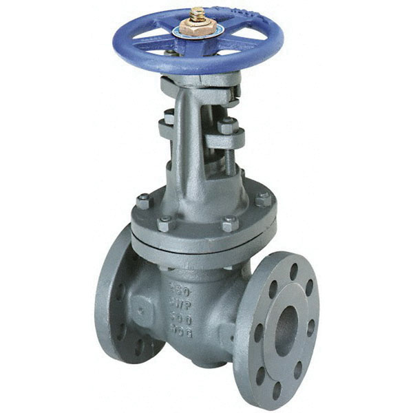 Nibco® Cast Iron Class 250 Gate Valve, Flanged, 500 psi CWP