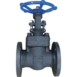 Ohio Valve GA150FE Forged Carbon Steel Gate Valve, Flanged, Class 150