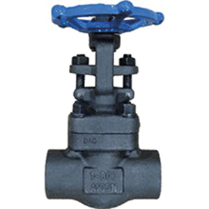 Ohio Valve GA800SW Forged Carbon Steel Gate Valve, Socket Weld, Class 800