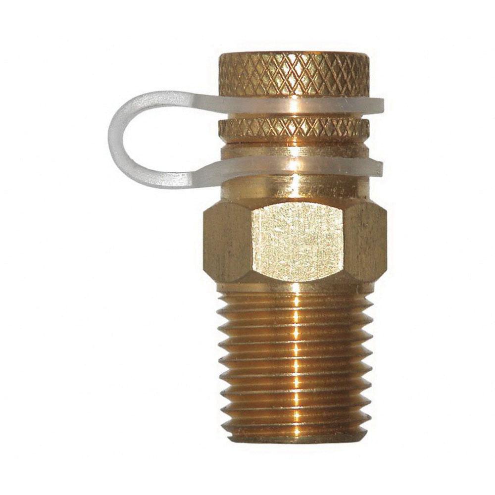 Winter Brass Test Plug, MNPT, 1000 psi